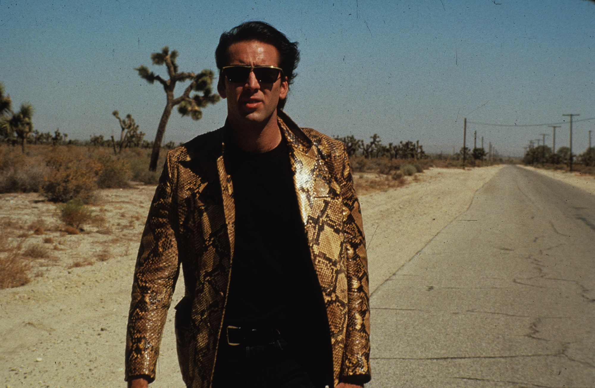 Wild at Heart. Image courtesy of NBC Universal
