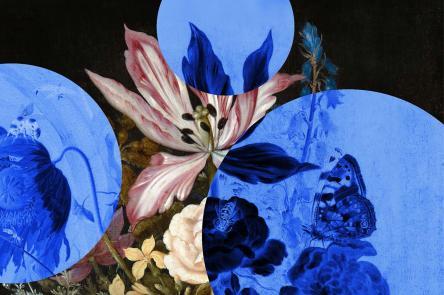 Perfume: A Sensory Journey Through Contemporary Scent