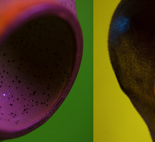 An artwork by Ilona Sagar, that shows two images on stylised, coloured backgrounds. On the left hand image is a purple concave shaped with darker purple dots on it. On the right handside is a profile view of a shaved head, with stubbled hair and an ear