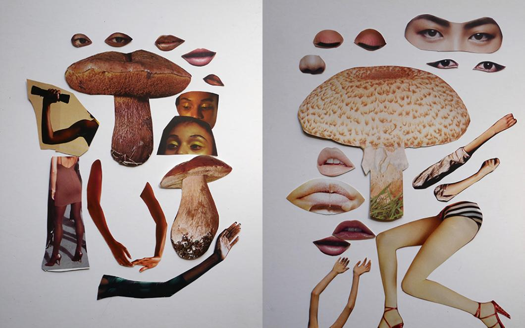 Cut-out images of mushrooms and arms and legs