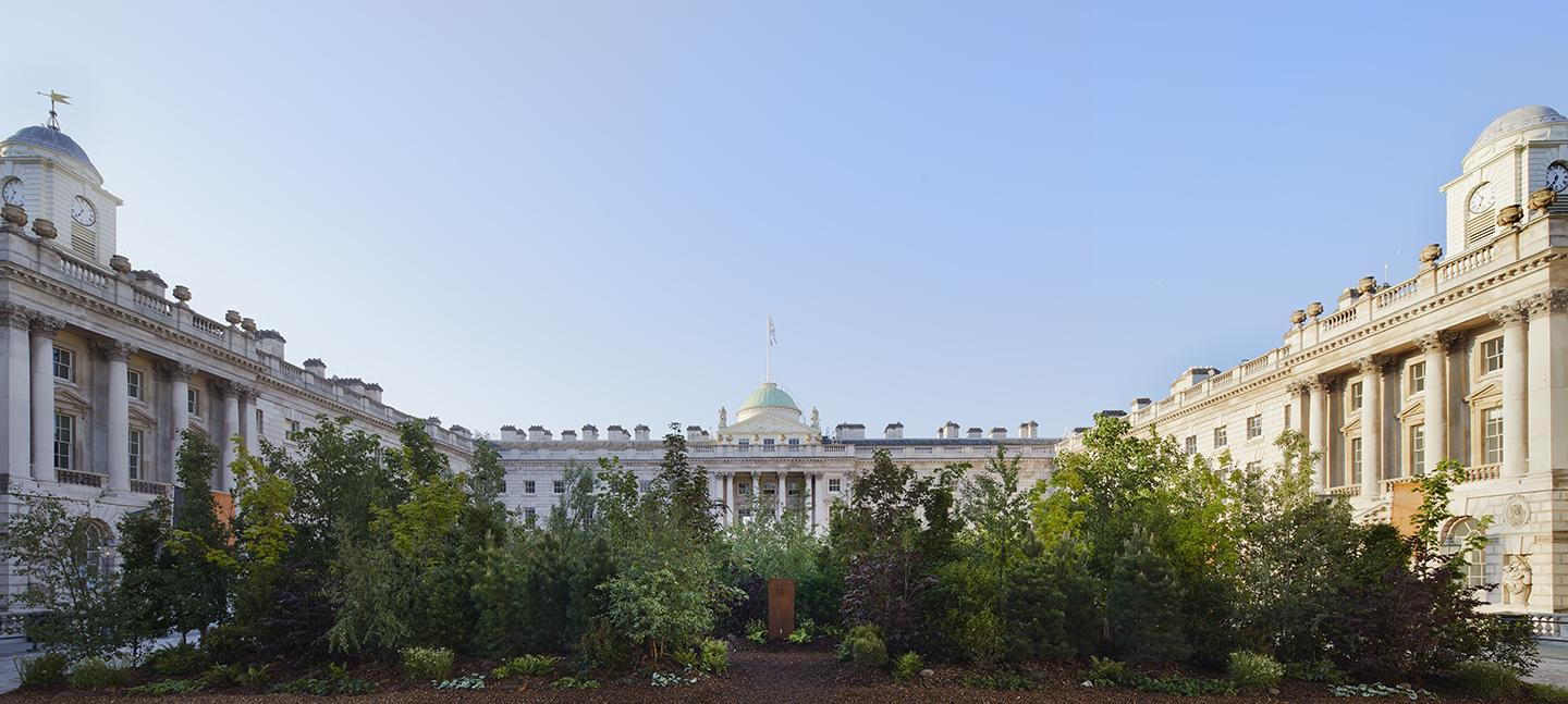 A photo of Somerset House courtyard, filled with trees