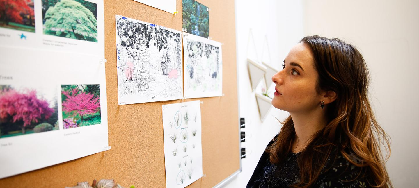 A photo of Mirelle Phillips looking at a pin board with focus. On the pin board are photos of trees alongside drawings and diagrams.