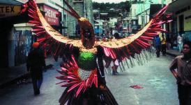 Horace Ové photograph of Trinidad Carnival showing a reveller in an elaborate bird suit